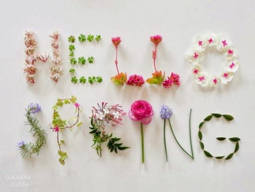 Spring comes to Bolton